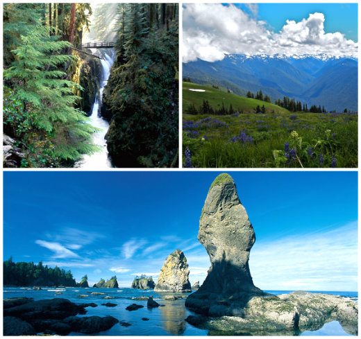 Национальный парк Олимпик-2