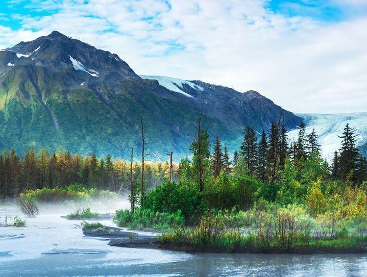 Леса и горы